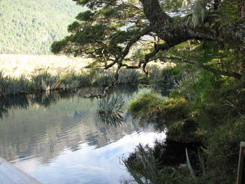 Mirror Lakes on the Road to Milford Sound