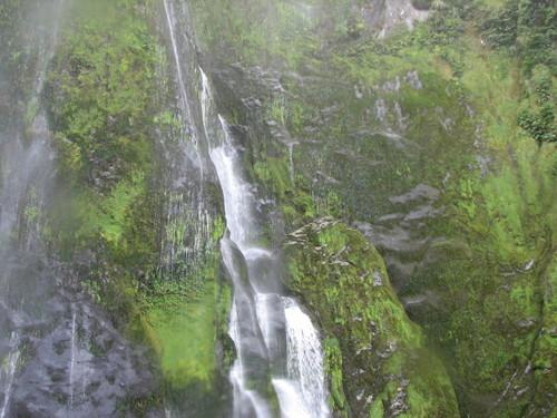 Waterfalls at Milford Sound